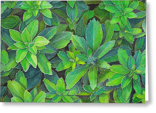 Green Gold Greeting Card by Yvonne Scott