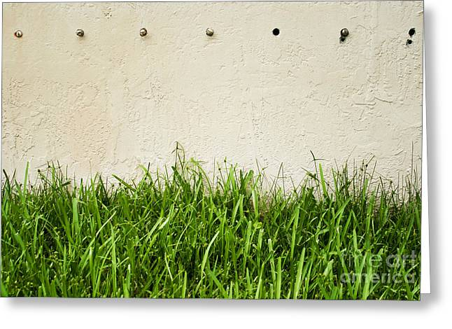Green Grass Against Wall Greeting Card