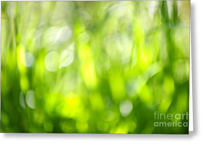 Green Grass In Sunshine Greeting Card