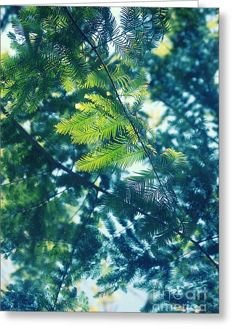 Green Greeting Card by HD Connelly