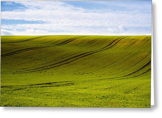 Green Hill Greeting Card by Svetlana Sewell