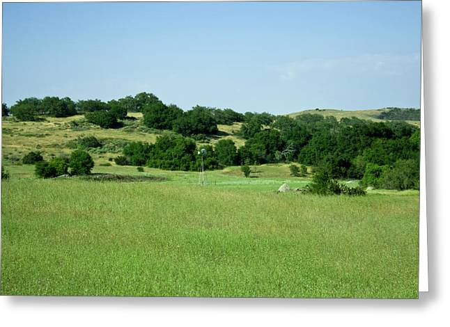 Green Meadow Greeting Card by Terry Thomas