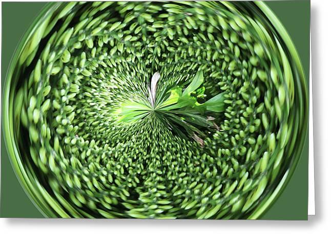Green Orb Greeting Card