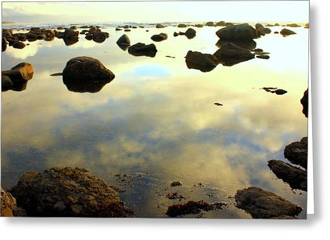Green Point Seascape Greeting Card
