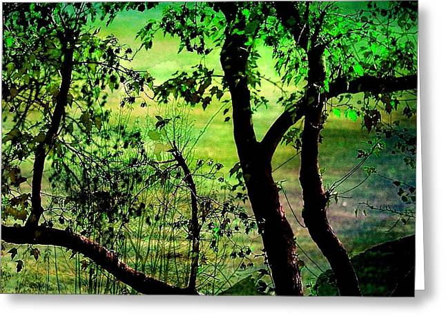 Green Greeting Card by Shirley Sirois