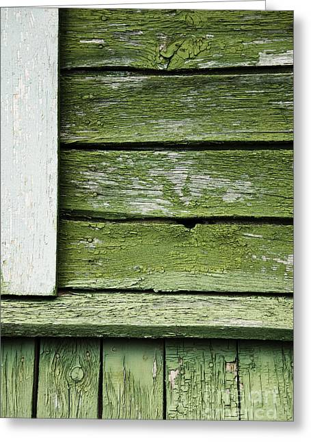 Greeting Card featuring the photograph Green Wooden Wall by Agnieszka Kubica