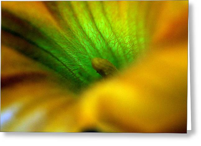 Greener On The Other Side Greeting Card by Wanda Brandon