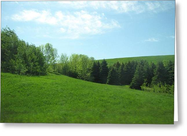 Greener Pastures Greeting Card by Harry Wojahn