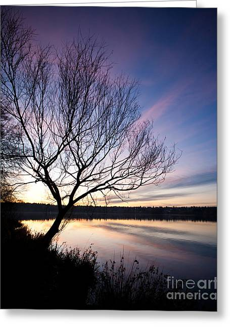 Greenlake Serenity Greeting Card by Mike Reid