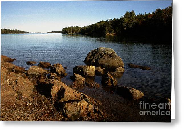 Greenlaw Cove Deer Isle Maine Greeting Card by Thomas R Fletcher