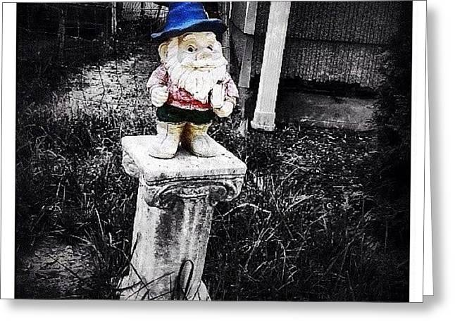 Greenville's Garden Gnome Greeting Card