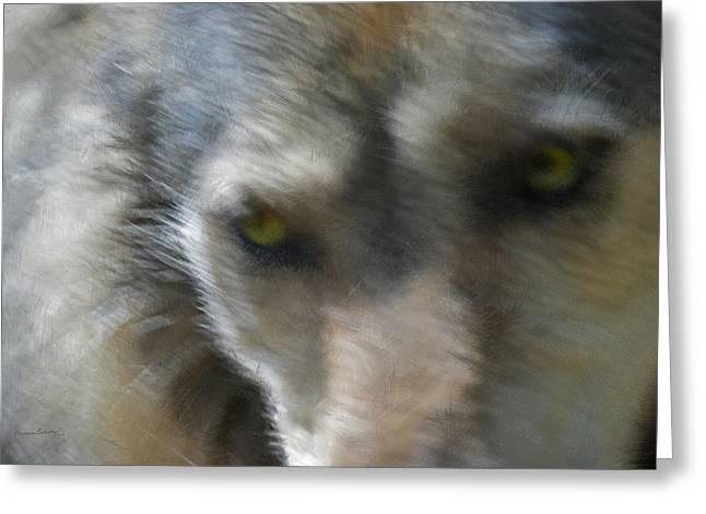Grey Wolf Painterly Greeting Card by Ernie Echols