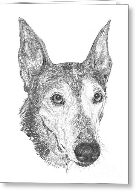 Greyhound Greeting Card by Deb Gardner