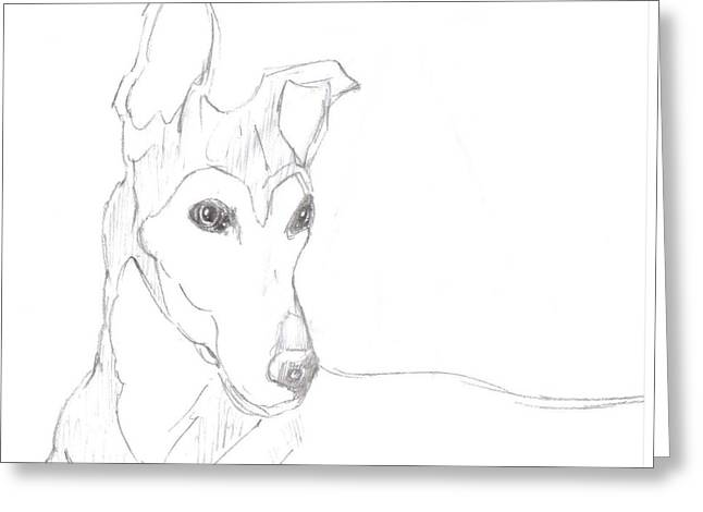 Greeting Card featuring the drawing Greyhound by George Pedro