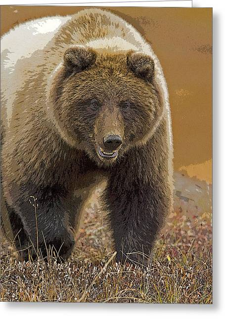 Grizzly Bear- Eye To Eye- Abstract Greeting Card by Tim Grams