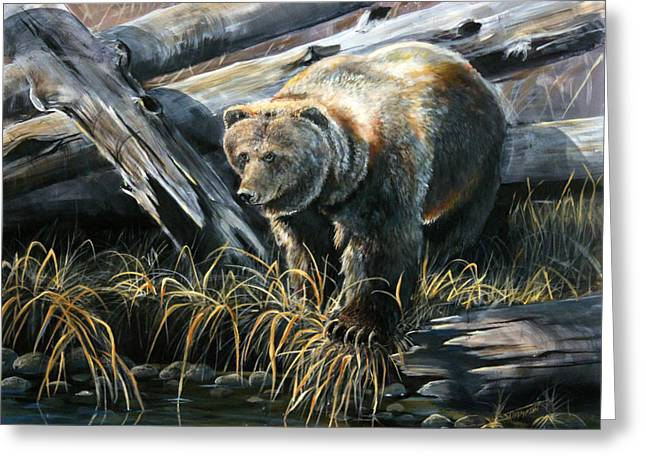 Grizzly Pond Greeting Card by Scott Thompson