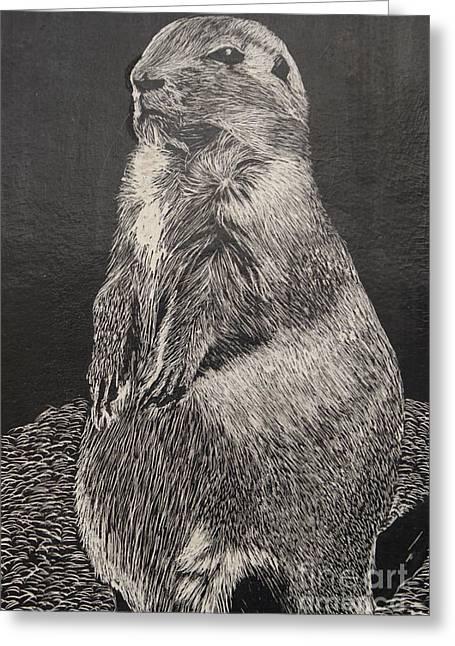 Groundhog Greeting Card by William Ohanlan