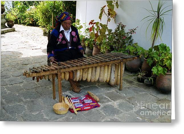 Guatemalan Musician Greeting Card