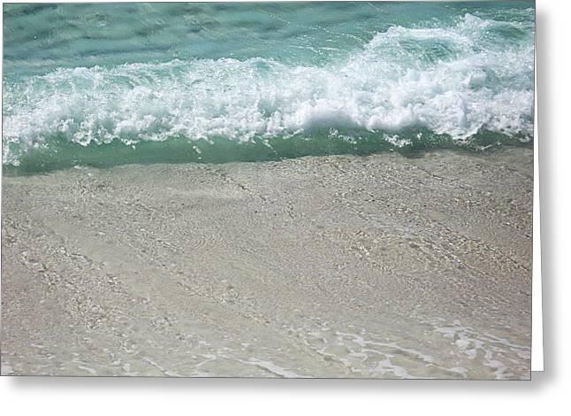 Gulf Coast Greeting Card by Dorothy Cunningham