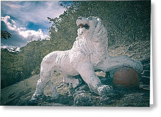 Gun Hill Lion Greeting Card