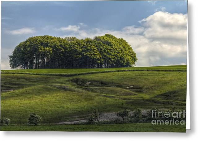 Hackpen Hill Greeting Card by Clare Bambers