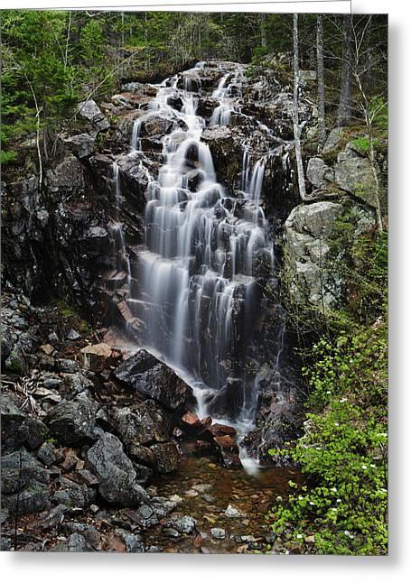 Hadlock Falls Acadia Greeting Card by Rick Berk