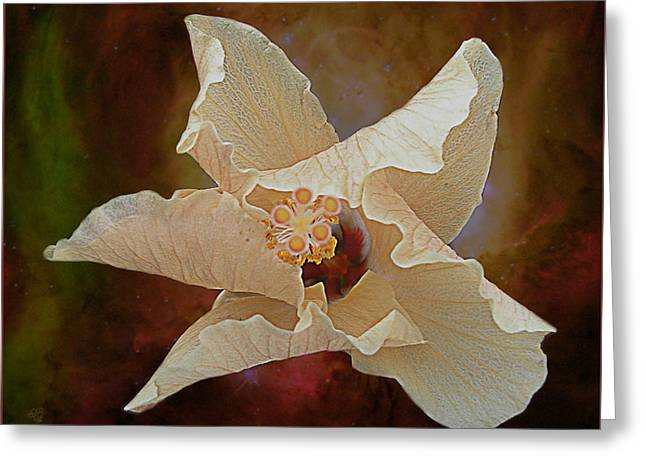 Hibiscus Floats In Space Greeting Card