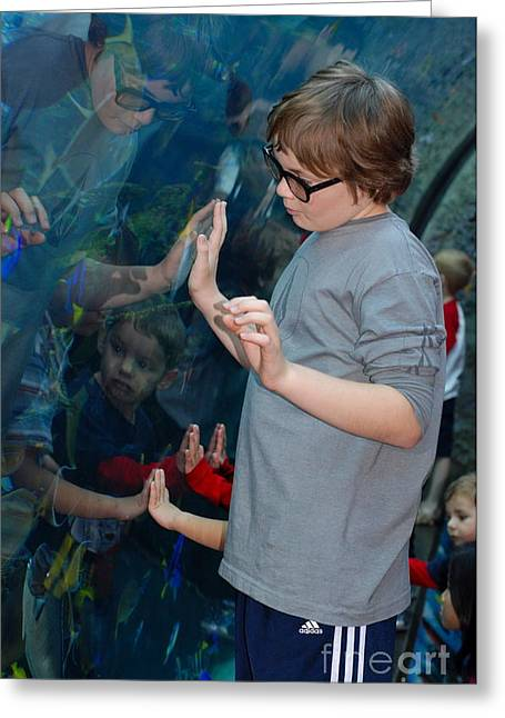 Hands Across The Water Greeting Card by Andrea Simon