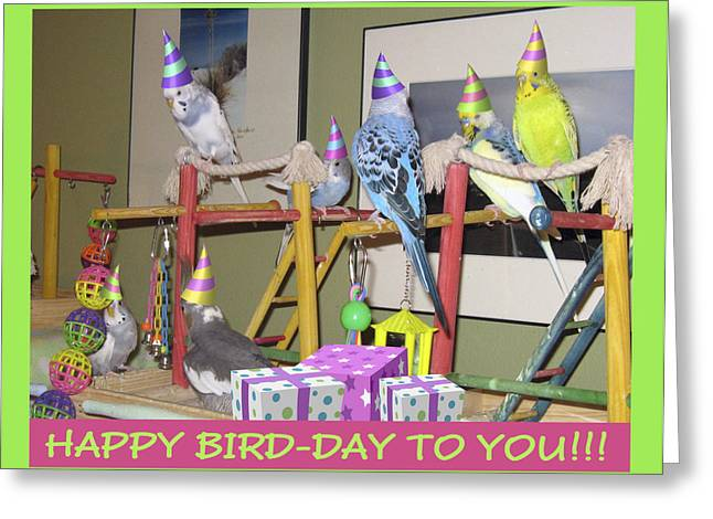 Greeting Card featuring the photograph Happy Bird-day by Kimberly Mackowski