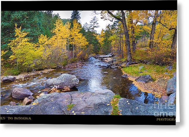 Happy Place In The Woods Panorama Poster  Greeting Card by James BO  Insogna