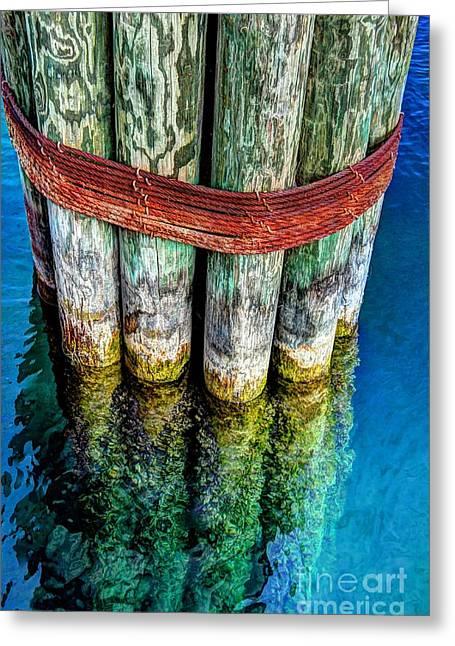 Harbor Dock Posts Greeting Card by Michael Garyet