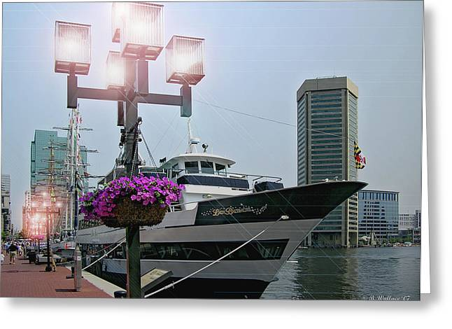 Harbor Lights Greeting Card by Brian Wallace