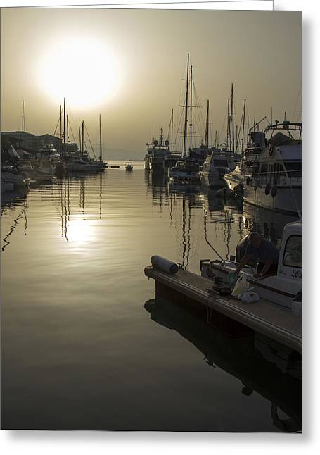Harbor Sunset Greeting Card by Stephen McCluskey