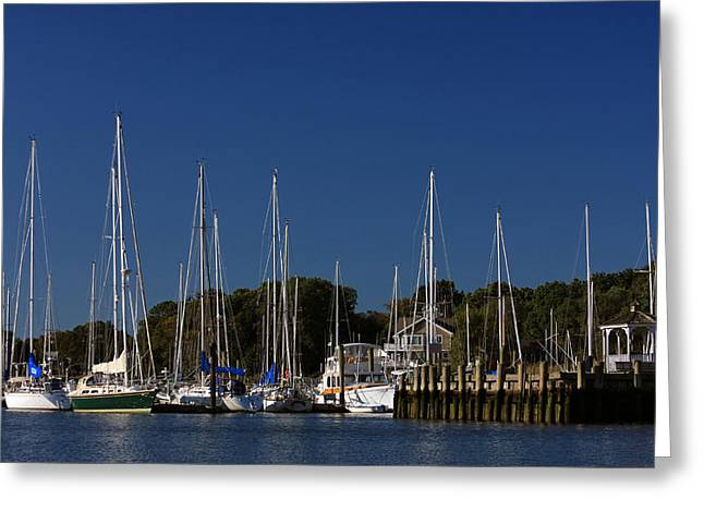 Harbor View Greeting Card by Karol Livote