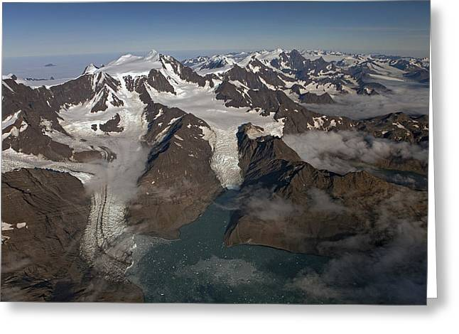 Harker And Hamberg Glacier Greeting Card by Ingo Arndt
