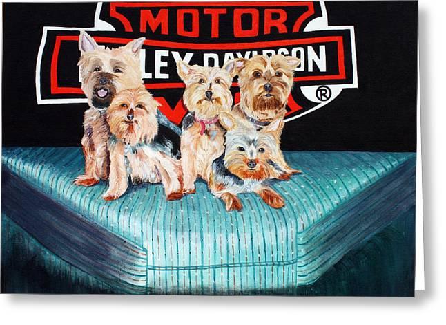 Harley Dogs Greeting Card by Carolyn Ardolino