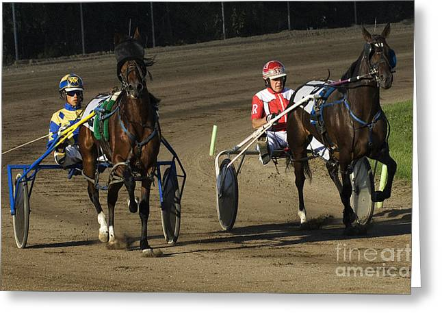 Harness Racing 10 Greeting Card by Bob Christopher