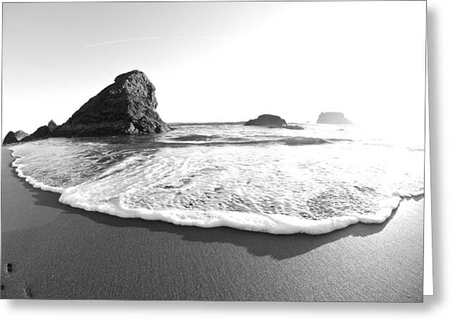 Harris Beach State Park Monochrome Greeting Card