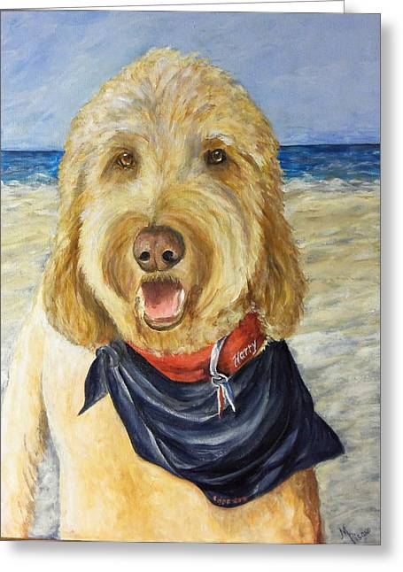 Harry At The Beach Greeting Card by Maureen Pisano