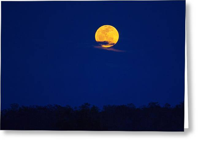 Harvest Moon Greeting Card by Mark Andrew Thomas