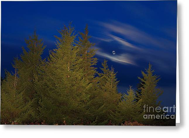 Harvest Moon Over Dolly Sods Greeting Card