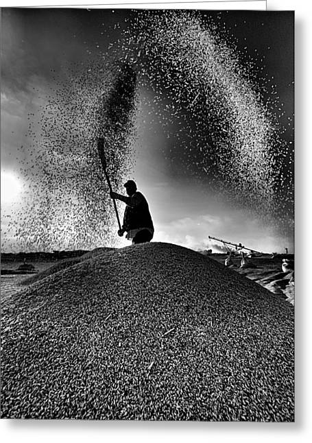Greeting Card featuring the photograph Harvest by Okan YILMAZ