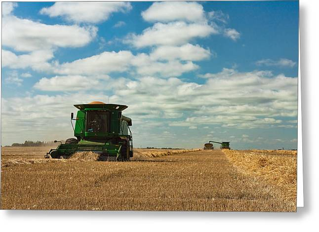Harvest On The Canadian Prairies Greeting Card by Matt Dobson