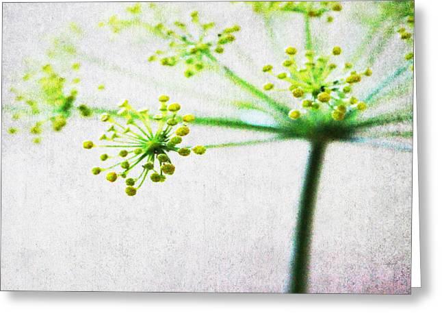 Harvest Starburst 2 Greeting Card by Linda Woods