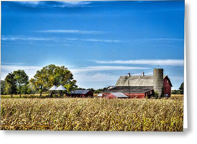 Harvest Time Greeting Card by Dan Crosby