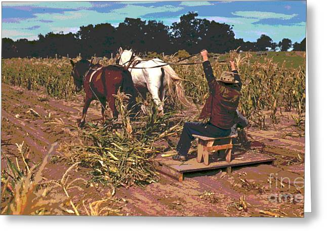 Harvesting New Corn  Greeting Card