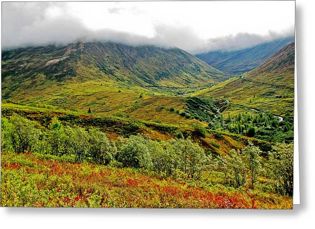 Hatcher Pass - Alaska Greeting Card by Cheryl Colaw