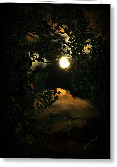 Greeting Card featuring the photograph Haunting Moon by Jeanette C Landstrom