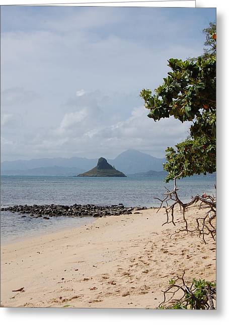 Hawaii Beach Greeting Card