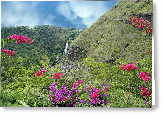 Greeting Card featuring the photograph Hawaii Waterfall by Geraldine Alexander